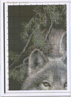 """Пара вовків 3""""4"""