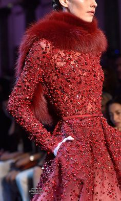 Couture Fall 2014 - Elie Saab (Details)