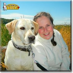 Read Lucy's story the Yellow Labrador Retriever from Washington and see her photos at Dog of the Day http://DogoftheDay.com/archive/2012/February/06.html .