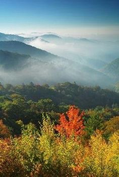 Beginning in September the entire town of Gatlinburg gets into the fall spirit with the Smoky Mountain Harvest Festival. Come see the colorful mountains. Places To Travel, Places To See, Smoky Mountain National Park, All Nature, Amazing Nature, Down South, Great Smoky Mountains, Vacation Spots, The Great Outdoors