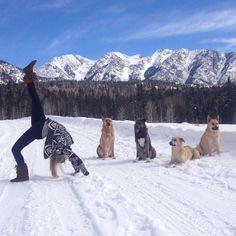 Winter Yoga with Rachael - we love dogs! #Durango #Colorado  Durango Mountain Resort
