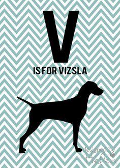 V is for Vizsla Printable art