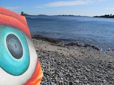 Ocean Point Maine