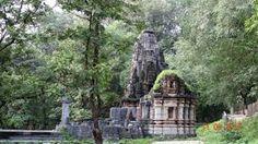 Resultado de imagem para ruins in the forest