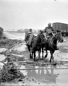WWI, 1 August 1917; Shell-carrying pack-horses splashing through the mud on a road north of Ypres, crossed by railway line, Battle of Pilckem Ridge. Detail. © IWM (Q 5939)
