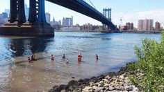 A New York High School Is Using Oysters In Its Curriculum--And To Protect The City's Coastline