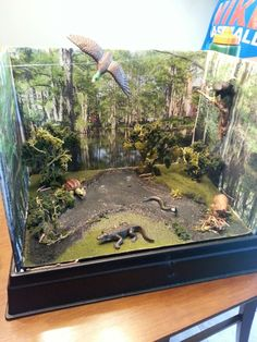 Swamp diorama Vinyl ReadyGrass Mat, Project Base and Backdrop, Realistic Water and more -- Scene-A-Rama products make it easy to build your diorama. Kindergarten Projects, School Projects, Projects For Kids, Book Projects, Project Ideas, Rainforest Project, Ecosystems Projects, 7 Arts, Rainforest Animals
