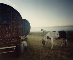 Landscapes ~Photographed by Iain McKell