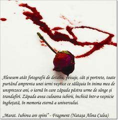 Citat Natasa Alina Culea - Marat. Iubirea are spini (carte de dragoste)