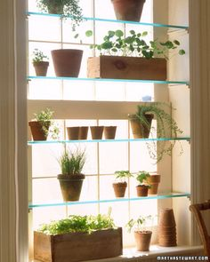 i love these glass shelves that go in window frames for plants. colored glass bottles would look beautiful there too! perfect for a window with good light but a not-so-beautiful view.