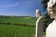 Duitse wijnen | de Mooiste uitzichten Wijn |