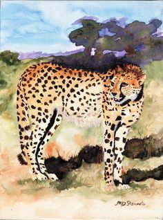 """""""Standing Cheetah"""" ~ Watercolor on Canvas"""