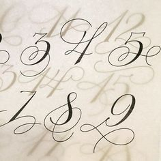 Enjoying myself at working on this for a project (at Studio Martina Flor) Copperplate Calligraphy, Calligraphy Alphabet, Typography Letters, Typography Logo, Modern Calligraphy, Tattoo Lettering Fonts, Watercolor Lettering, Hand Lettering, Calligraphy Tutorial