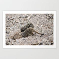 Meerkats Art Print by Jinzha Bloodrose - $15.60