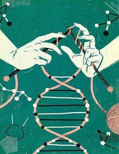ADN / DNA