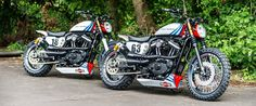 "Harley ""Martini Sportster's"" by Shaw Speed & Custom"