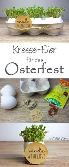 Kresseeier zu Ostern basteln Craft cress eggs for Easter Diy Crafts To Do, Upcycled Crafts, Creative Crafts, Yarn Crafts, Easter Traditions, Family Traditions, Diy For Kids, Crafts For Kids, Family Holiday