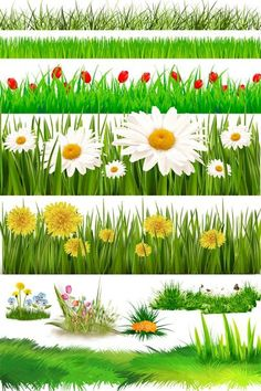 Flower Clipart PSD file free download