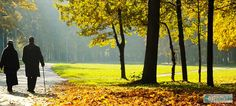 Fall Prevention : Staying Safe This Fall Girl Blog, Environment, Spirituality, Product Launch, Walking, Country Roads, Feelings, Outdoor Decor, Image