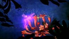 Fantasia, despite its initial commercial failure, went on to become one of the most popular films of all time and is today considered a classic film.