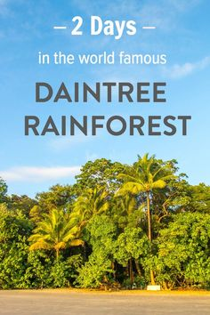 How to spend 2 days in Australia's famous Daintree Rainforest - what to see…