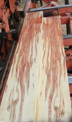 box elder Wood Slab, Wood Veneer, Maple Floors, Wood For Sale, Rustic Kitchen Decor, Wooden Clock, Wood Lathe, Wood Sculpture, Wood Species