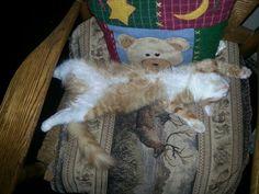 Very very comfy