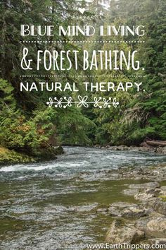 """""""Forest bathing"""" and """"blue mind"""" are natural therapy… whether you're walking on a beach or through a forest, make sure you breathe deeply, slow down to observe your environment and let your mind relax. 