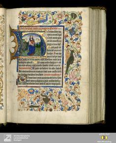 Niederländisches Stundenbuch - Cod.brev.11 Titelbeschreibung [Diözese Utrecht][Letztes Drittel 15. Jahrh.]