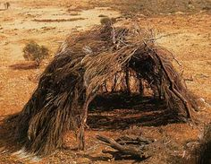 Aboriginal Technology -   picture 20 - A wiltja Source: Aboriginal Technology: Housing, Alex Barlow, Macmillan Education Australia (1994)