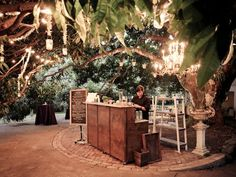 Bar Under The Tree With Lights On Branches Is So