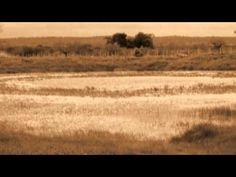 Territorio de la ausencia, de Ramón García Mateos - Parte VII - De: Triste es el territorio de la ausencia, 1998 - Voz: Joaquín de la Buelga