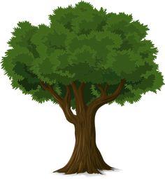 Árbol, Forestales, Tronco, Naturaleza, Hojas, Ramas