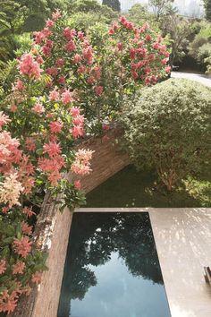 Jardim contemporâneo em São Paulo é uma verdadeira obra de arte