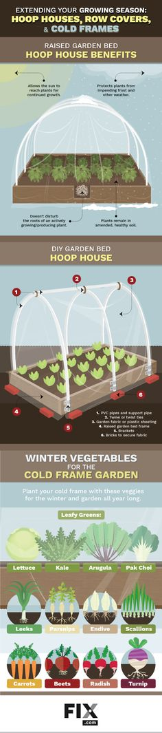 A simple enclosure in your garden will have you planting earlier and harvesting later than you may have thought possible. Learn how to plan and build hoop houses, row covers and cold frames.