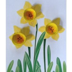 The kids will have fun making these Egg Carton Daffodils. The make the perfect present for a special relative or friend. Daffodil Craft, Daffodil Day, Spring Crafts For Kids, Summer Crafts, Art For Kids, Kid Crafts, Junk Modelling, Egg Carton Crafts, Diy Ostern