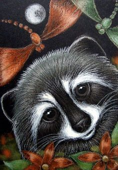 Google Image Result for http://www.ebsqart.com/Art/Gallery/Colored-Pencils-Pastels-Glitter/652884/650/650/LOVELY-RACCOON-DRAGONFLIES.jpg