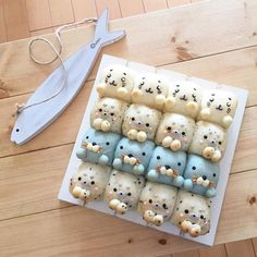 Little baby seals pull apart bread by umi (@umi0407)