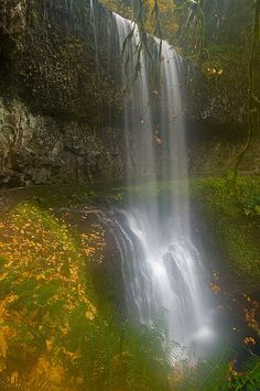 Silver Falls State Park - Oregon | Flickr - Photo Sharing!