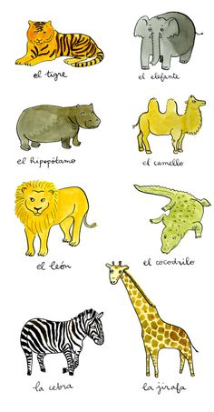 Great way to learn Spanish!