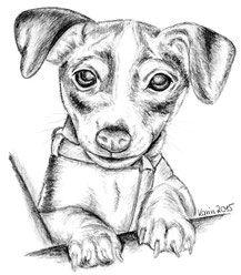 T-Shirt DOG-Canine-CUCCIOLO Amo la mia Border Terrier-Kids Bambini