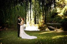 Pulpshed weddings