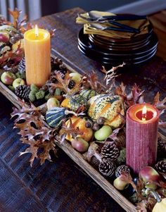 Fall Table Decor: Autumn-hued pillar candles and a variety of tiny gourds, squash, cones, and pods.