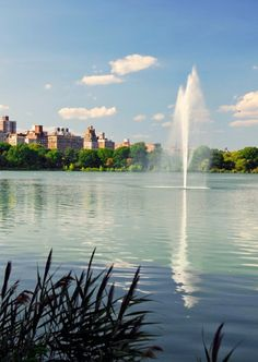 Find some of the hidden gem spots around Central Park. #NYC