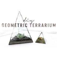 Make these super geometric glass terrariums using old photo frames and glue. Watch The Sorry Girls & # Step by step tutorial on Terrarium Diy, Glass Terrarium, Mason Jar Crafts, Mason Jar Diy, Décoration Candy Bar, The Sorry Girls, Diy Crayons, Old Picture Frames, Diy For Girls