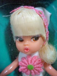 Image result for dolly darlings doll