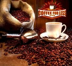 CoffeeForLess is a Starbucks Preferred Office Coffee Provider, but our coffee blends also include Millstone, Folgers, Green Mountain, Barrie House & many other popular brands and styles, including our own house blend. We carry much more than just coffee, though. We also sell the leading tea brands in the country. Celestial Seasonings, Bigelow, Tazo and Tetley offer a wide variety of flavors & blends sure to please your preference, whether it is for green tea, white tea, black tea or herbal tea.