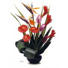 Hawaiian Aloha III Flower Arrangement