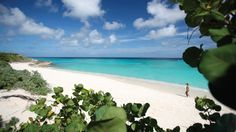 Zemi Beach, on Shoal Bay, voted one of the worlds best beaches (by The Discovery Channel)