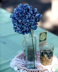 simple centerpiece, blue flower, bottle